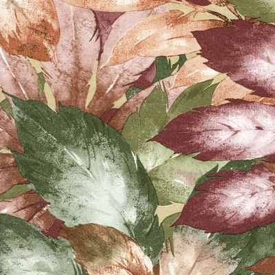 6113 autumn garden med
