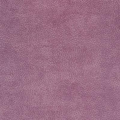 6116 plum med