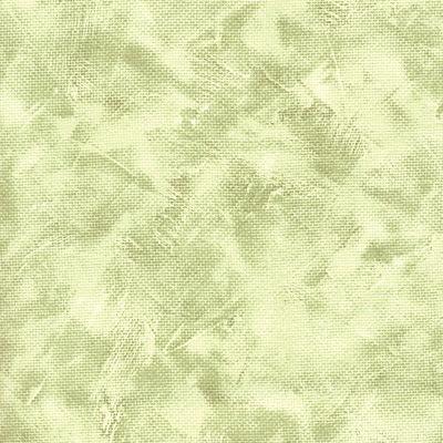 6119 celery med
