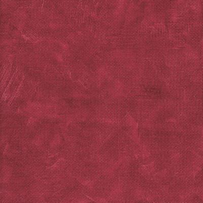 6119 raspberry med