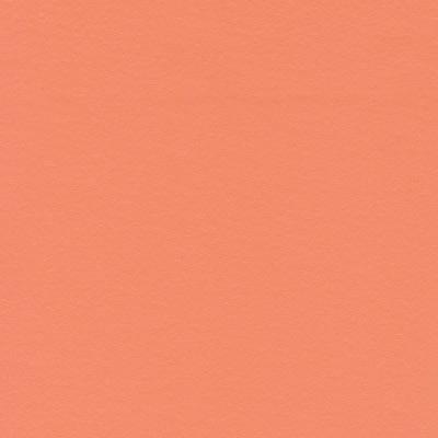9808 salmon med