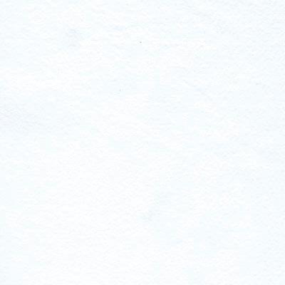 9808 white med